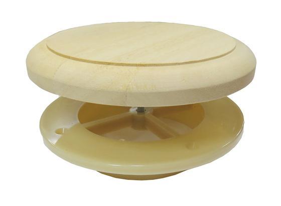 Клапан тарельчатый термопласт. d=100мм (липа)